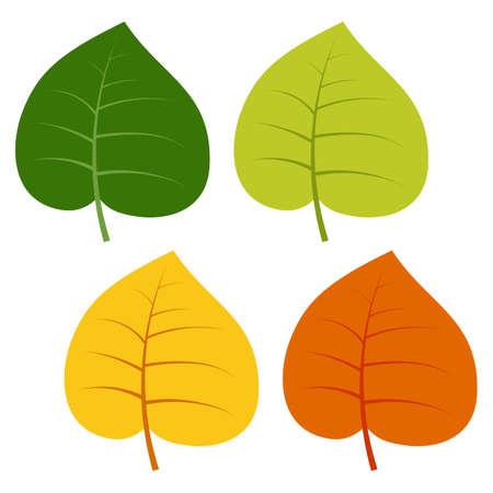 白い背景に分離された緑、黄色、赤の葉のセットです。紅葉のベクター イラストです。 写真素材 - 87753284