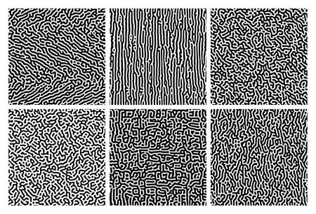 Set of six monochrome turing reaction gradient backgrounds. Abstract diffusion pattern with chaotic shapes. Vector illustration. 矢量图像