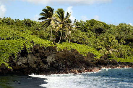 Tropical beach with cocunut trees and rocks during a bright sunny day Stock Photo