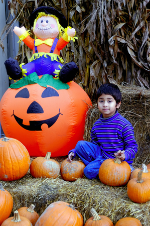 tassles: An indian kid having fun with the  pumpkins Stock Photo