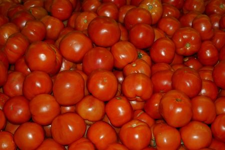 heap: Loads of Tomatoes  after an healthy harvest and ready for sale Stock Photo