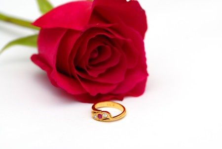 lady s: Beautiful Diamond Ring in Red Rose Stock Photo