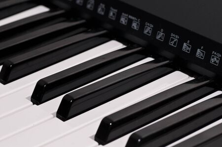 close up shot of black and white keys of a piano Stock Photo - 8209906