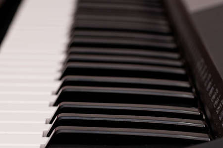 close up shot of black and white keys of a piano Stock Photo - 8486078