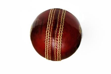 Un nuevo balón de cricekt aislado en un fondo blanco