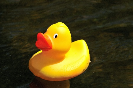 A rubber duck isolated on water background Stock Photo - 8999395