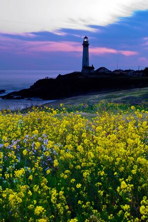 The popular light house at Pigeon Point in California, USA photo