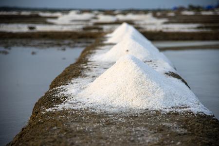 briny: Freshly mined sea salt ready for packaging Stock Photo