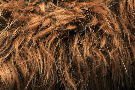 artificial hair: artificial fur textures