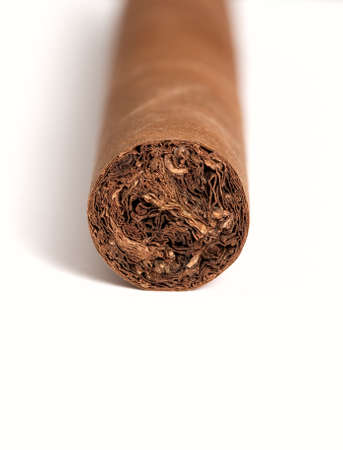 Cigar isolated on white background photo