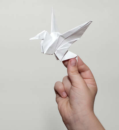 Origami crane in hand
