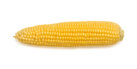 Fresh corn on white background
