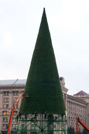 Christmas tree assemblage in Kiev photo