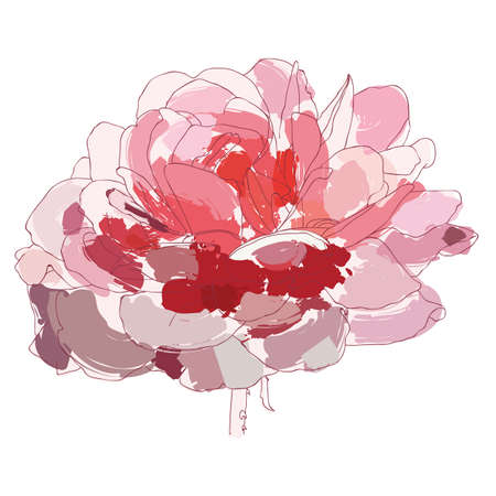 Pink rose painted with a brush