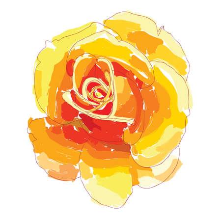 orange rose: Orange rose painted with a brush