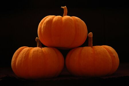 fibrous: Pumpkins stacked on black background