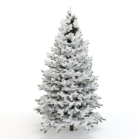 3d pine tree full of snow on white background photo