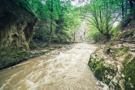 restless: restless river flowing through the forest of Cheile Nerei national park, Romania