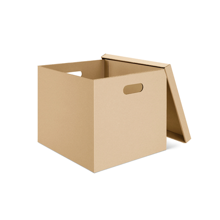 Blank cardboard box with open lid, 3d illustration