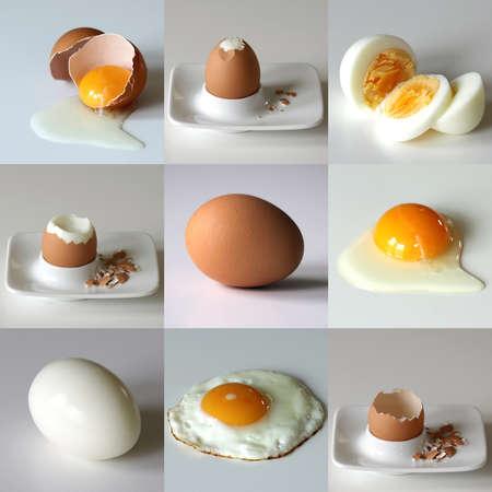 white eggs: Set of nine eggs in various situation - sliced, boiled, fried, coocked