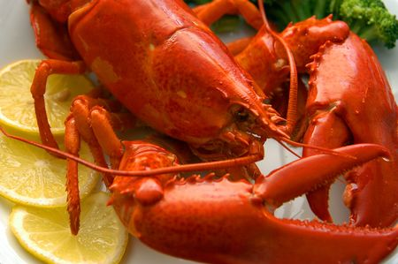 Lobster close-up                            Stock Photo - 2448554