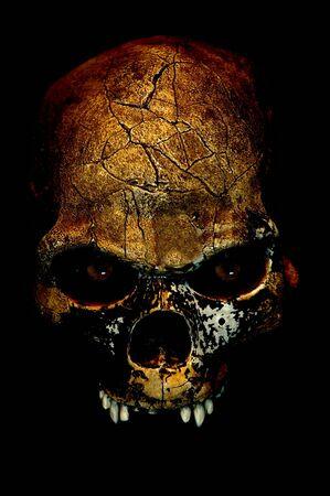 두개골 스톡 콘텐츠