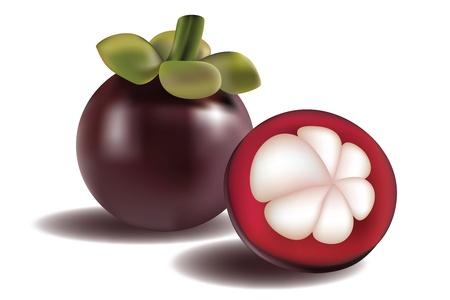 Illustratie van een en een half gesneden Mangosteen met schaduwen op witte achtergrond