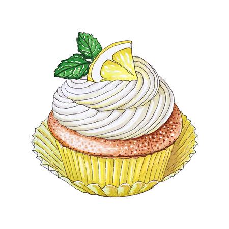 손으로 그린 레몬 컵 케잌 스톡 콘텐츠