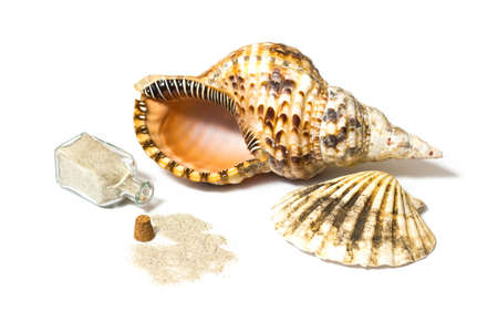 Marine sea shells and open sand bottle composition in a studio on white background photo