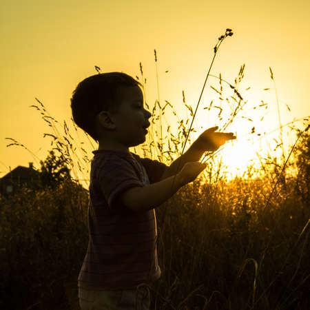 face side: Child silhouette in a sunset  pin field Stock Photo