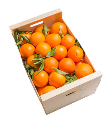 collected: Wooden box of spanish oranges freshly collected on white  Stock Photo