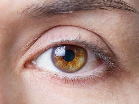brown eye: Closeup of beautiful female natural brown eye without makeup