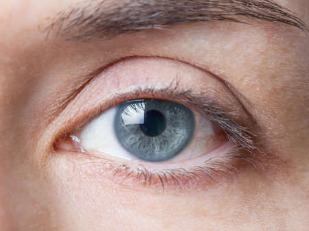 girl with gray eyes: Closeup of beautiful female natural blue eye without makeup
