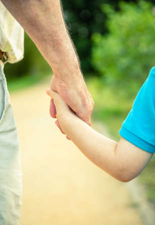Back view of child holding hand of senior man over a nature background. Two different generations concept.