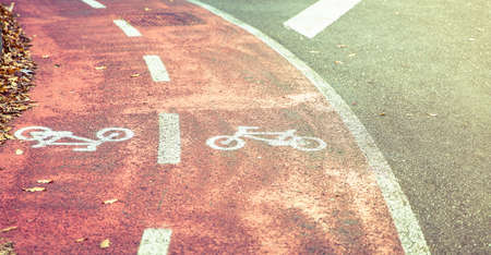 bike lane: Bicycle road symbol on a street bike lane with autumn leaves in the sidewalk border