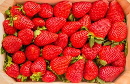 strawberry baskets: Closeup of tasty spanish strawberries freshly collected on a wooden box view from above Stock Photo