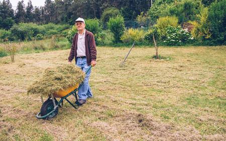 trabajando duro: Retrato del hombre mayor que lleva carretilla con heno seco en un campo Foto de archivo