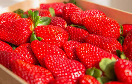 Closeup of tasty spanish strawberries freshly collected on a wooden box 免版税图像