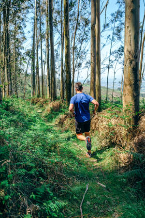 Young man participating in a trail race through the forest 版權商用圖片
