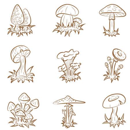 paddenstoel: Vector set van verschillende grappig paddestoelen  Stock Illustratie