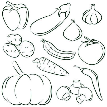 aubergine: Doodle Satz von verschiedene Gem�se isoliert auf wei�em Hintergrund