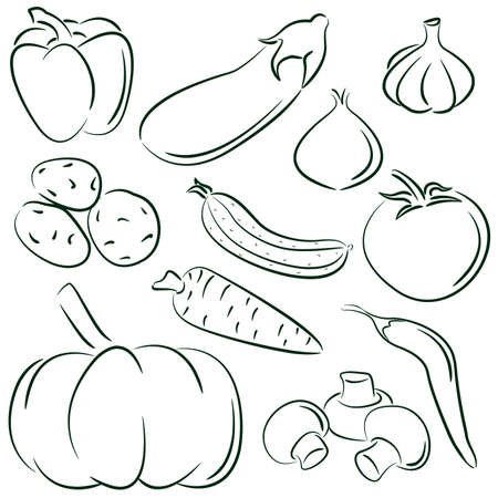 berenjena: Garabatear conjunto de diferentes verduras aislados sobre fondo blanco