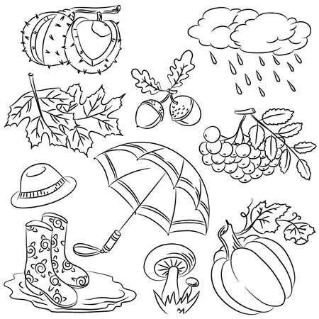 Autumn cute elements drawn in doodled style Vector
