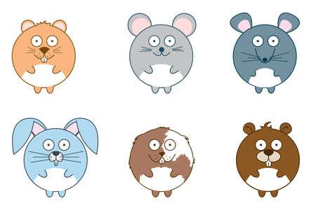 cavie: Simpatici roditori: criceto, topo, ratto, coniglio, cavia e beaver isolato su sfondo bianco