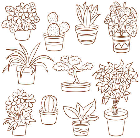 Doodle set of pot plants and flowers  Vector