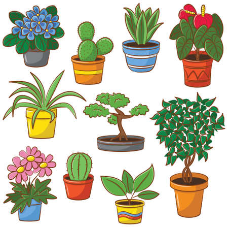 plant pot: Doodle set of pot plants and flowers