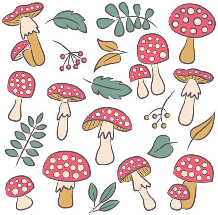 inedible: Cute amanita with leafs and berries color collection. Poisonus mushrooms and plants isolated on white.