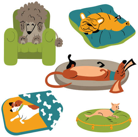 Cute dogs sleeping on the beds. Vector illustration of purebred doggies lying on the comfortable and soft pillows. Funky cartoon pets on the colorful mats.