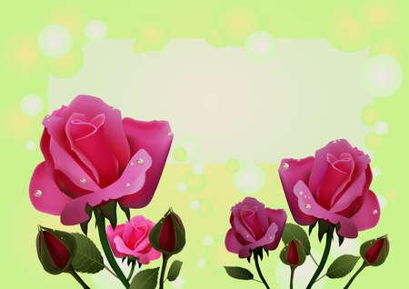 rose Stock Vector - 13312525