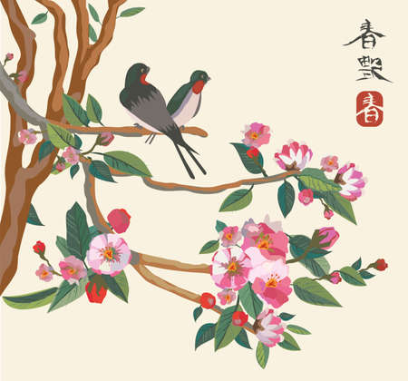 sakura flowers: Sakura bird Illustration
